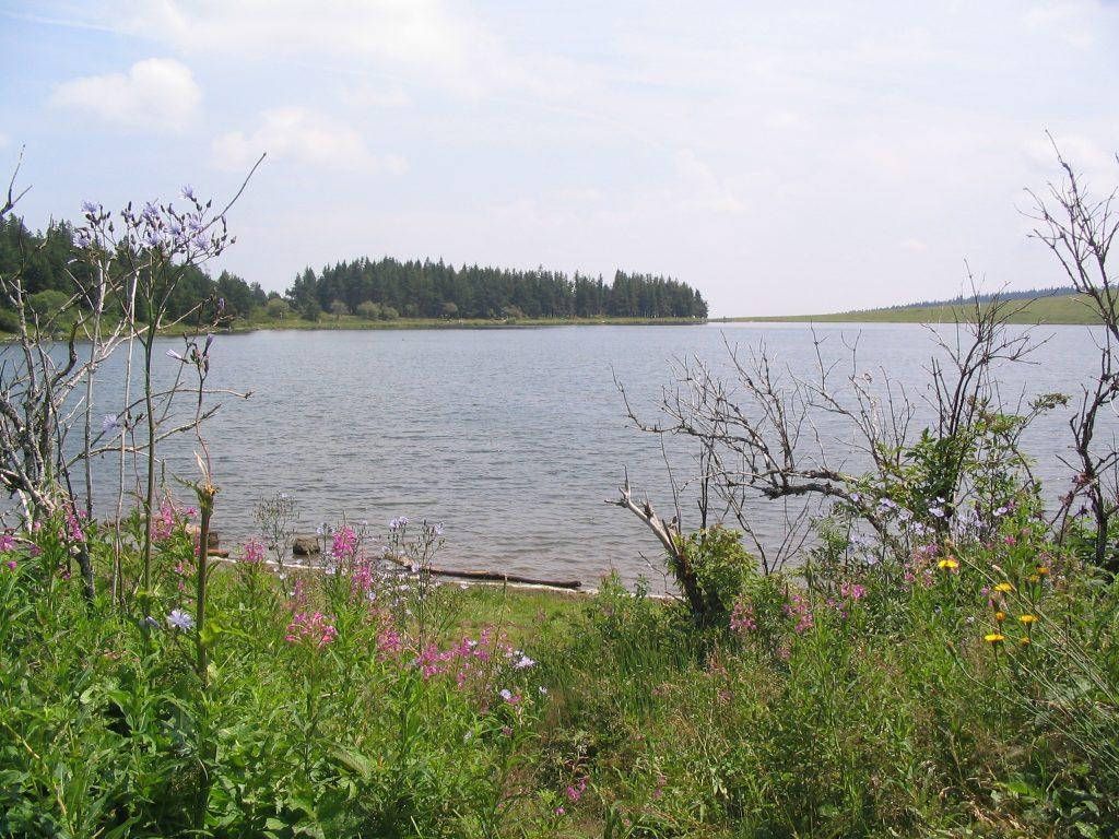 Le Lac de la Servière